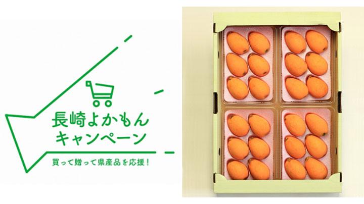 生産量日本一の長崎県産びわ