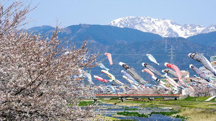 岐阜県垂井町でふるさと納税による地場産業振興など強化 まいぷれ