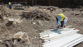 谷底の防護柵設置場所には、続々と資材が運び込まれた