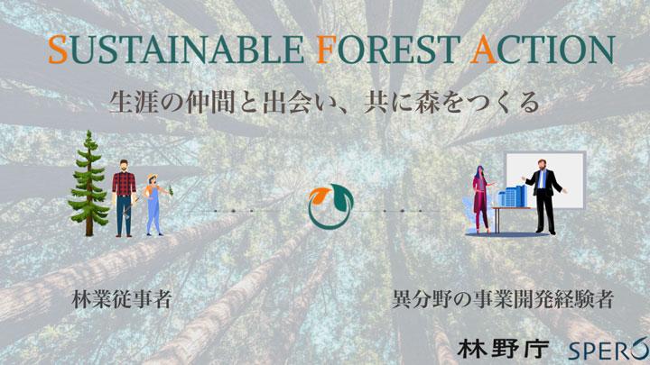 林業人材と事業開発経験者が共に森をつくる アクセラレーター募集開始