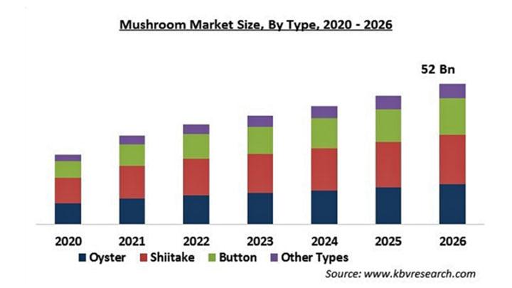 マッシュルームの市場規模 2026年に520億米ドル到達予測