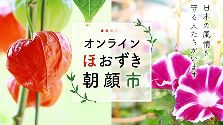 「オンラインほおずき・朝顔市」開催 豊洲市場ドットコム