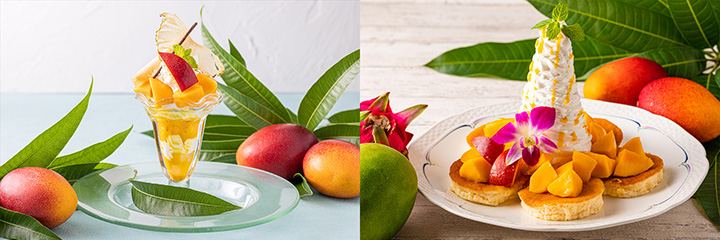 河津産マンゴーを使ったパフェ(左)とパンケーキ