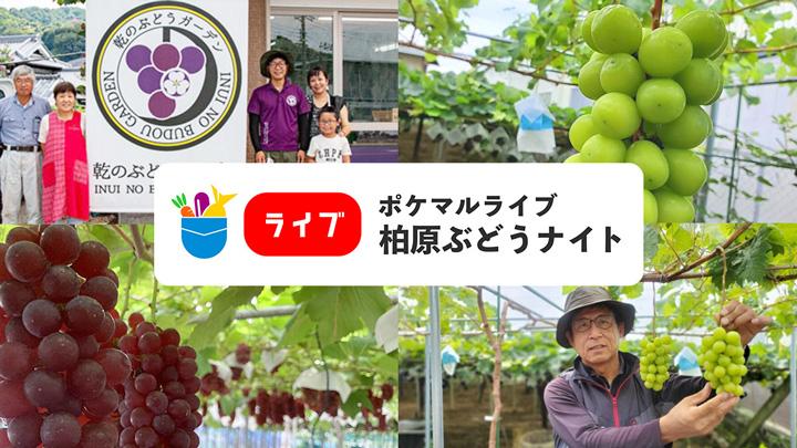 ポケットマルシェと大阪府柏原市が連携 生産者が伝えるライブコマ―ス実施