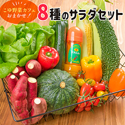 「こゆ野菜カフェおまかせ!『8種のサラダセット』」