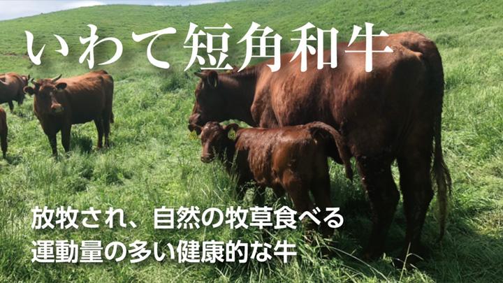 赤身の伝統和牛「いわて山形村短角牛」の生産者支援 Makauakeで限定販売
