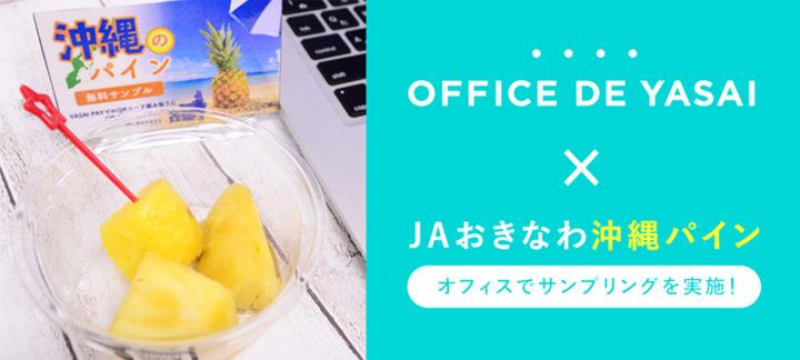 東日本の150社で「沖縄県産パイン」サンプリング実施 JAおきなわ