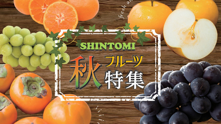 宮崎県新富町産の梨、栗など秋の味覚「ふるさとチョイス」で一挙公開 こゆ財団