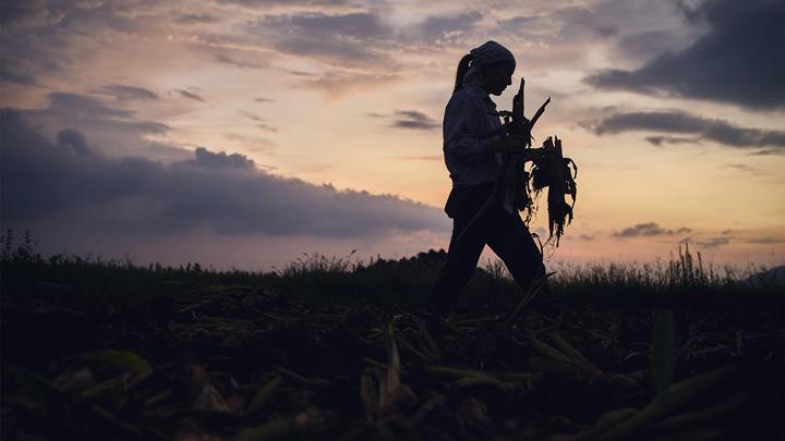 プロジェクトに参加している国内外57人の農家を紹介