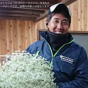 【産地応援】折原園芸のミックスアソート(30本)3960円(税込、送料込)2
