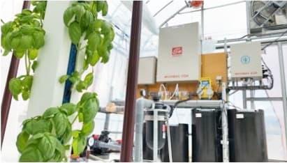 高石野施設野菜生産組合の事業承継しIoT農業として再生ー八幡平スマートファーム
