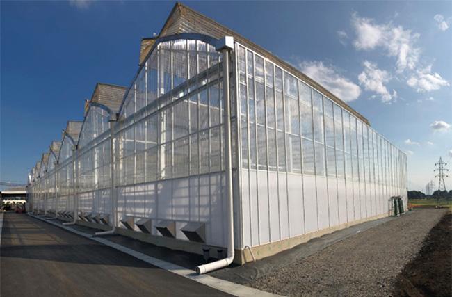 リサーチパーク鶴の高度環境制御ハウス