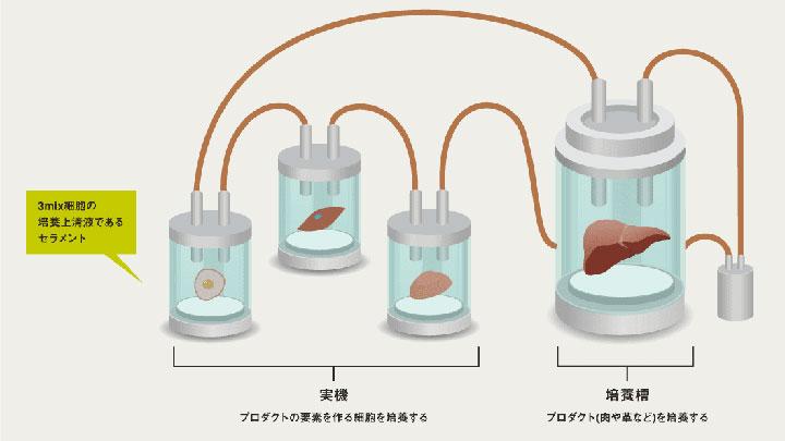 培養肉づくりのイメージ