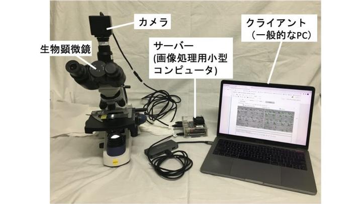 顕微鏡、カメラ、画像処理用コンピューターを接続して葉のサンプルを観察している様子