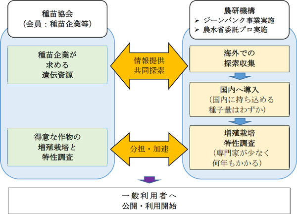 農研機構と種苗協会の海外遺伝資源に関する共同研究の体制