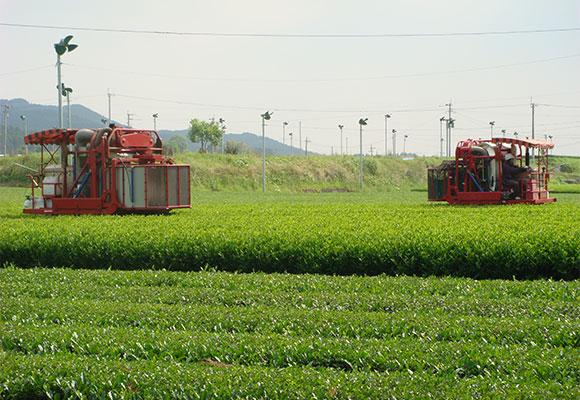 【JA革命】第4回 農業法人化のトップランナー宮崎県 県中央会がバックアップ