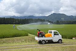 【現場で役立つ農薬の基礎知識 2015】水稲の本田防除 いまが重要な防除時期