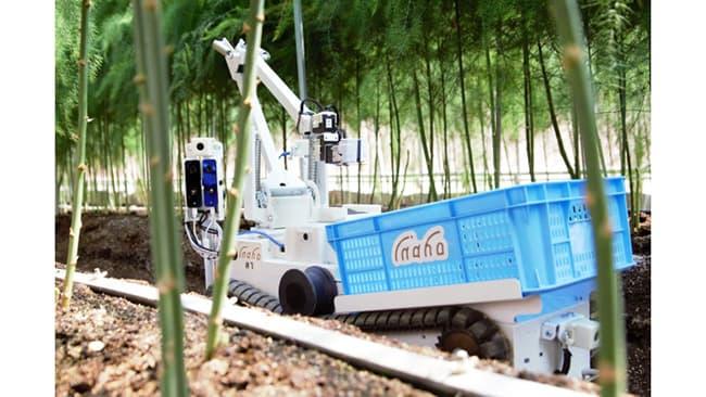 自動野菜収穫ロボット