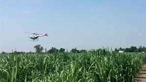 無人農薬散布サービスを海外で開始 グループ会社を通じてヤマハ発動機