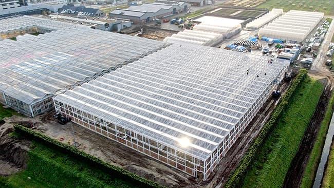 ボスマン社の大規模温室