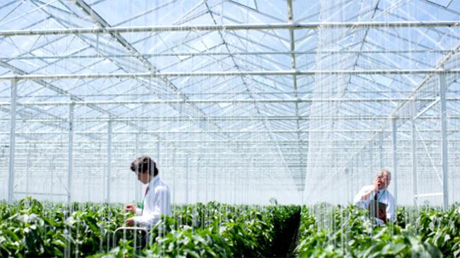 「農業生物製剤市場」タイプ別、作物の種類別などグローバルな需要を分析