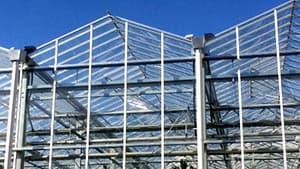 タカミヤが手がけるオランダ式フェンロ―型ガラスハウス