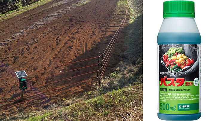 「バスタ液剤」が電気柵に沿って発生した雑草を効果的に防除