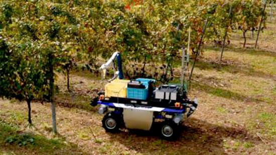 自動走行により収穫作業点に移動するUGV