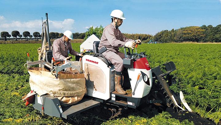 収穫作業のイメージ