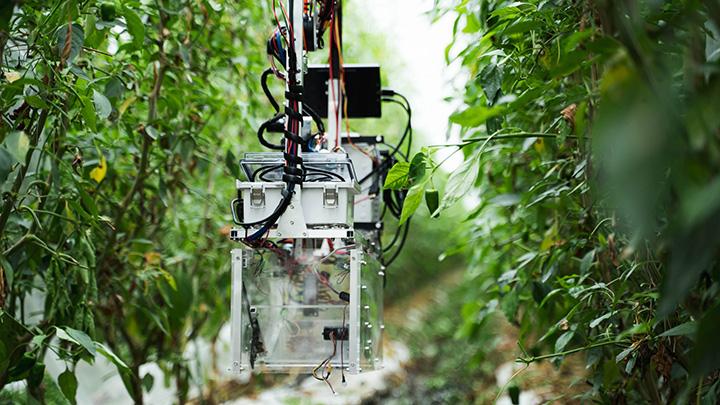 吊り下げ式の収穫ロボット(世界各国へ特許申請中)