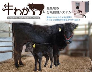 画像認識AIによる牛の分娩検知システム「牛わか」7月に発売