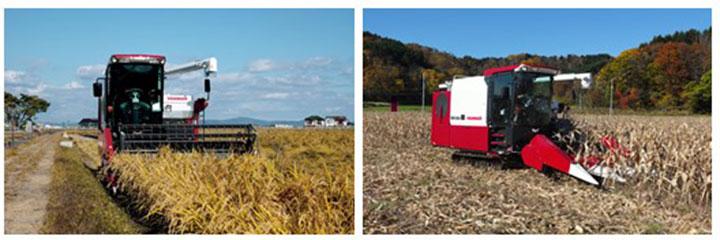 「リールヘッダーによる稲収穫作業(左)とコーンヘッダー装着による子実用とうもろこし収穫作業