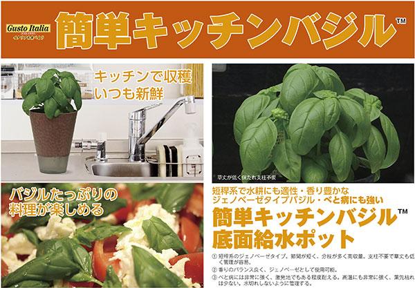 「簡単キッチンバジル」底面給水エコポット仕様で新登場 トキタ種苗