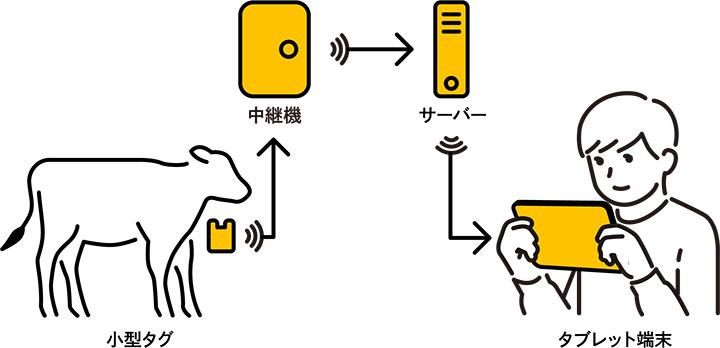 日々変化が起こりやすい仔牛に特化したシステム