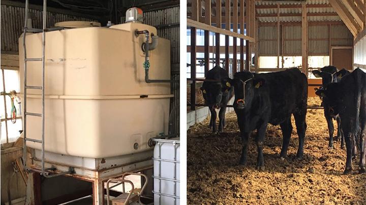 「腐植」で畜舎の水質を改善「飲水システム」サービス開始 エンザイム