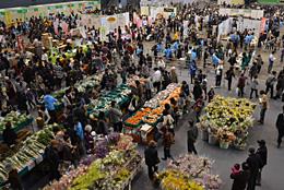大消費地ならではの賑わいをみせる「博多じょうもんさん」の収穫祭