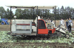 園芸用農業機械・キャベツ収穫機