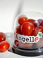 全農オリジナルトマト「アンジェレ」