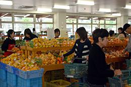 農産物直売所「愛彩ランド」の売り場。ミカンをはじめ地域の農産物が豊富に並ぶ。