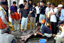 獣害対策の研修でイノシシの解体を学ぶ盟友