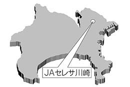 JAセレサ川崎の位置