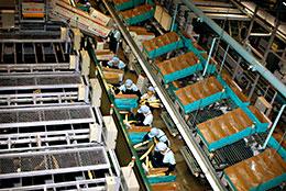 JA帯広かわにしのナガイモ工場