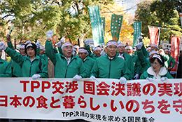 TPP反対で運動をリードするJAグループ