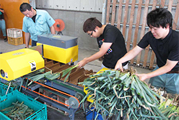 【JA全農がめざすもの】営農販売企画部・TACの活動 産地復活めざし奮闘するTAC