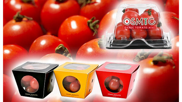 高糖度ミニトマトの通年生産サポート 農業ビジネスで業務提携 OSMIC