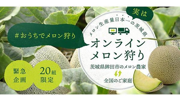 親子向けに日本初のオンラインメロン狩り企画ー茨城県