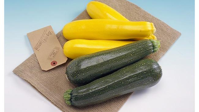 旬野菜が暑さ対策にお勧め、ズッキーニを推奨 タキイ種苗