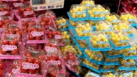愛知・豊橋から「へたなしトマト」Plumシリーズが出荷開始