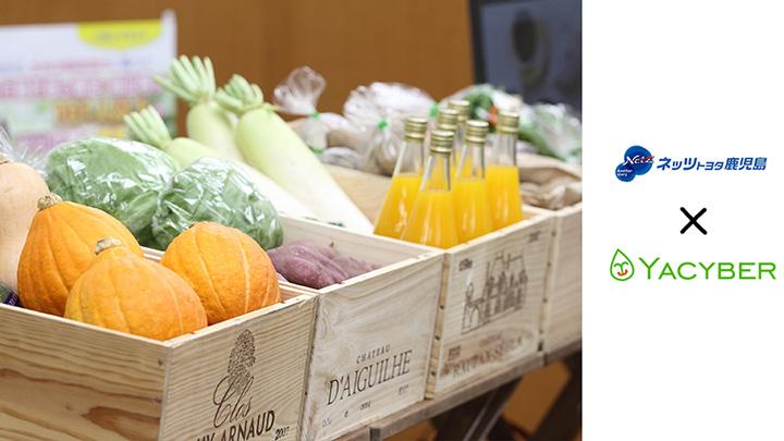 YACYBERとネッツトヨタ鹿児島が連携 野菜直売所設置