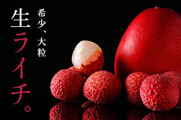 「ふるさとチョイス」で、宮崎県新富町のフルーツ特集開始 こゆ財団